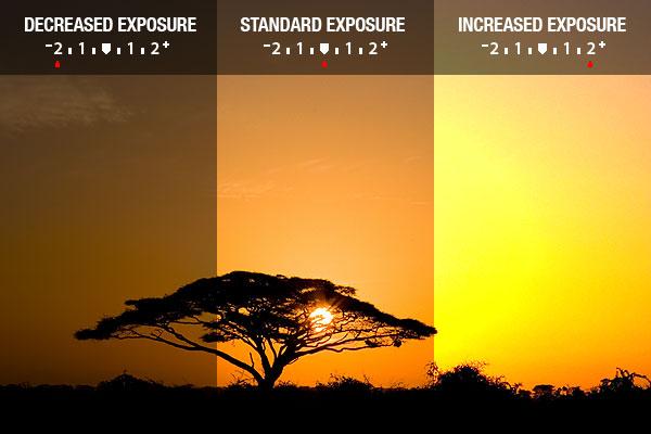 درک نوردهی – همراه با توضیح ISO، دریچه دیافراگم و سرعت شاتر