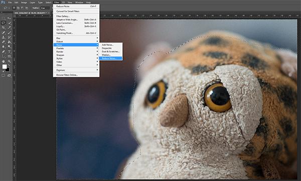 آموزش کاهش نویز عکس: چگونه از فیلتر کاهش نویز فتوشاپ استفاده کنیم